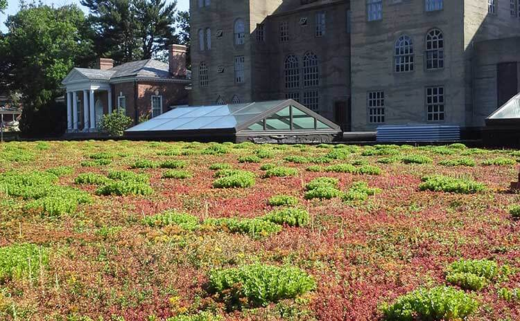 museum green roof design firm in worcester pennsylvania