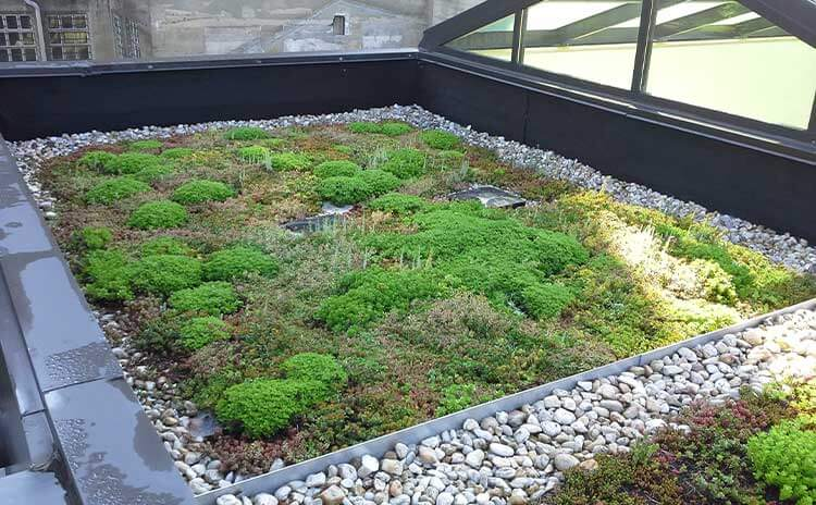 museum green roof design firm in worcester pennsylvania 2