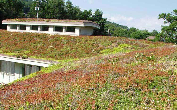 museum green roof architect design firm in worcester pennsylvania
