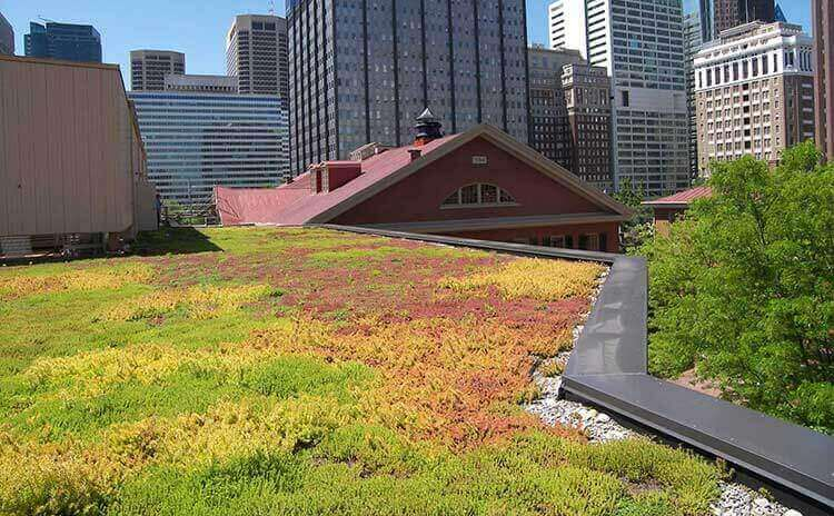 museum green roof architect design firm in worcester pennsylvania 4