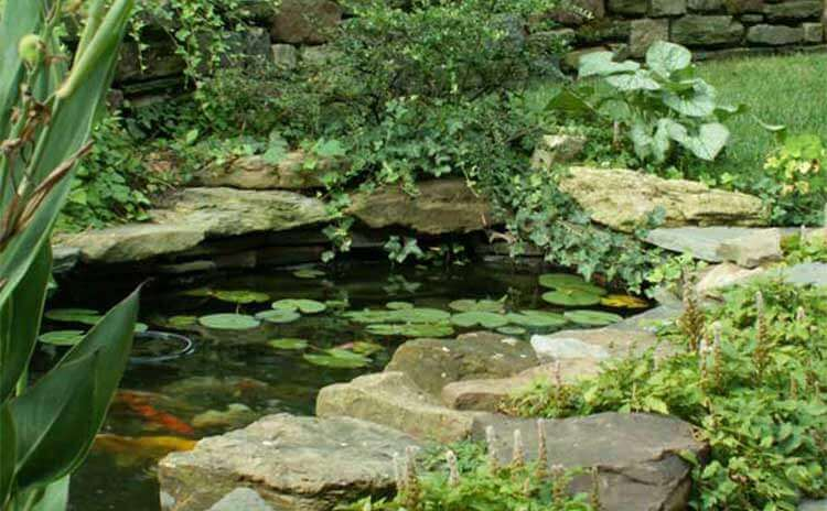 water garden design & construction firm in worcester pennsylvania
